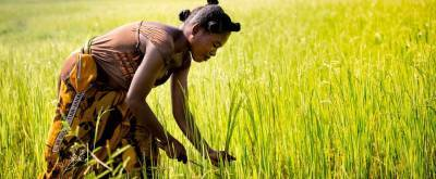 afdb-to-assign-usd-150m-for-women-in-agricultural-sector-english.jpeg