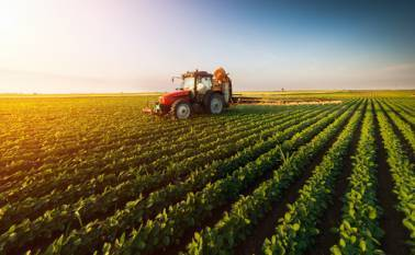 agr-minister-appeals-farmers-to-insure-crops-by-july-31-pmfby-for-kharif-2020-on-full-swing-english.jpeg