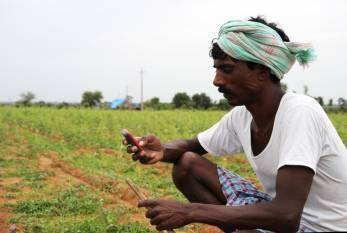 agri-experts-microsoft-india-to-process-weather-data-to-boost-yield-and-profit-english.jpeg