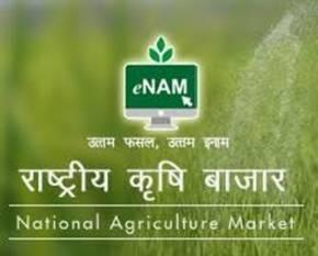 agri-ministry-adds-200-new-mandis-to-e-nam-platform-aiming-one-nation-one-market-english.jpeg
