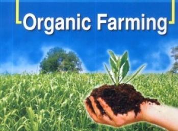agri-ministry-sign-mou-for-organic-farming-on-ganga-banks-english.jpeg