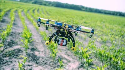 agritech-startup-agdhi-bags-biotechnology-ignition-grant-english.jpeg