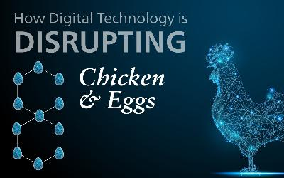 alltech-list-out-new-digital-technologies-to-improve-efficiencies-in-poultry-production-english.jpeg