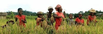 apollo-agriculture-secures-usd-1-million-from-abc-fund-english.jpeg
