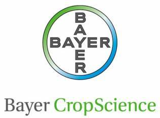 bayer-cropscience-records-inr-609-crore-during-h1-of-2020-21-english.jpeg