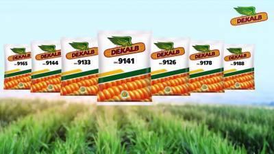 bayer-launches-high-yielding-corn-hybrid-seed-for-bihar-farmers-english.jpeg