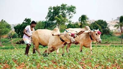 bhartiya-kisan-union-welcomes-govt-openness-over-three-farm-bills-english.jpeg