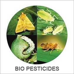 biopesticides-to-increase-with-emphasis-on-organic-foods-english.jpeg