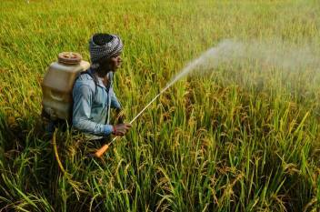 biotech-kisan-programme-gets-special-call-by-dbt-to-improve-agriculture-productivity-in-ne-region-english.jpeg