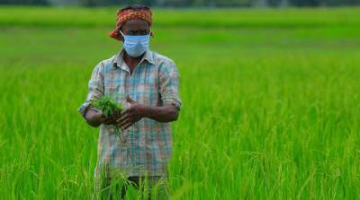 bse-e-agricultural-signs-mou-to-enrich-maharashtras-smallholder-farmers-income-english.jpeg
