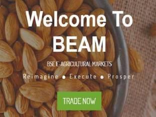 bse-launches-e-agricultural-spot-market-platform-english.jpeg