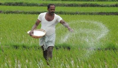 cabinet-approves-subsidy-for-phosphatic-potassic-fertilizers-for-2021-22-english.jpeg