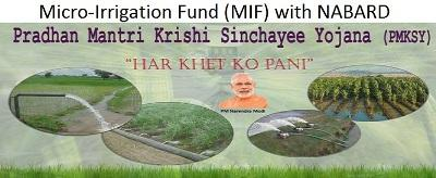 cabinet-approves-usd-745-mn-for-micro-irrigation-fund-with-nabard-english.jpeg