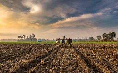 centre-allots-inr-4000-crore-to-state-govts-under-lsquo-per-drop-more-crop-rsquo-scheme-hindi.jpeg
