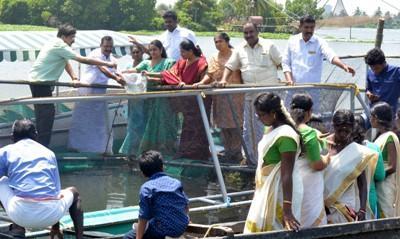 cmfri-launches-500-cage-fish-farming-units-in-kerala-english.jpeg