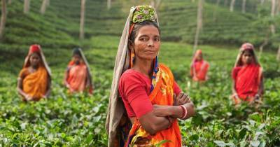 contribution-of-women-farmers-is-pivotal-in-making-indian-agriculture-atmanirbhar-says-parshottam-rupala-english.jpeg