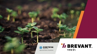 Corteva Agriscience launches Brevant seed to rice farmers in India