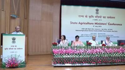 country-is-moving-towards-achieving-the-goal-of-poshan-suraksha-says-agri-minister-english.jpeg