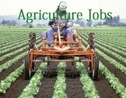 emerging-clean-labeling-trend-boosts-agriculture-jobs-says-indeed-com-data-english.jpeg