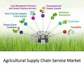 farm-liberalisation-to-bring-prosperity-to-entire-food-supply-chain-says-federation-of-seed-industry-of-india-english.jpeg