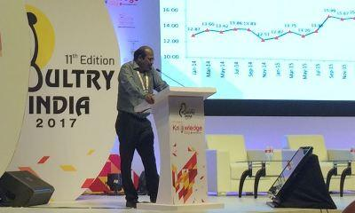 focus-on-efficiency-and-quality-is-paramount-for-indian-livestock-industry-english.jpeg