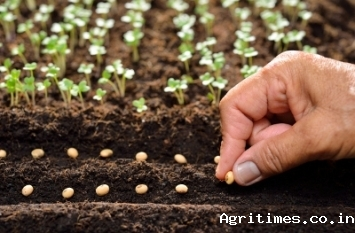 fsii-recommends-making-india-global-seed-production-hub-and-pushes-for-200-deduction-of-randd-expenditure-in-the-seed-industry-english.jpeg