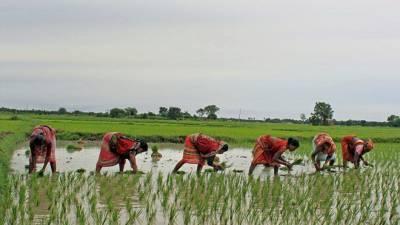 goi-creating-sustainable-livelihoods-for-rural-women-farmers-via-schemes-english.jpeg