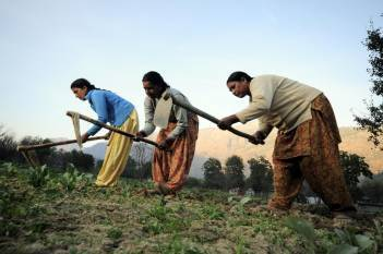 govt-celebrates-mahila-kisan-diwas-with-inspiring-stories-of-progressive-women-farmers-english.jpeg