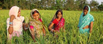 govt-establishes-institute-catering-to-women-in-agriculture-english.jpeg