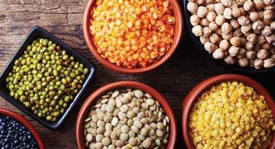 govt-formulates-strategy-to-achieve-self-sufficiency-in-pulses-for-kharif-2021-english.jpeg