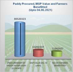 govt-procures-over-80-52-mt-of-paddy-benefiting-11-94-million-farmers-english.jpeg