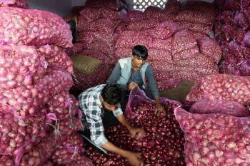 govt-relaxes-conditions-for-onions-imports-to-counter-high-market-prices-hindi.jpeg