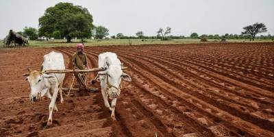 icar-focus-on-elevation-of-agriculture-technology-benefiting-farmers-english.jpeg