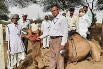 icar-nrc-organizes-webinar-on-world-camel-day-english.jpeg
