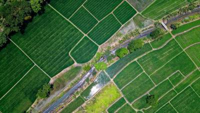 icici-bank-to-use-satellite-imagery-to-assess-creditworthiness-of-farmers-english.jpeg
