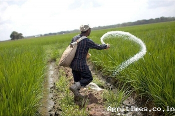 india-approves-new-antibiotics-for-crops-english.jpeg