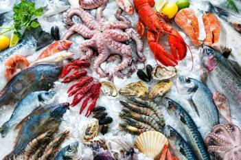 india-becomes-second-largest-aquaculture-producer-in-the-world-english.jpeg