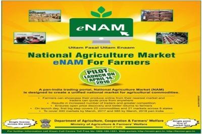 india-connects-250-agri-markets-to-online-platform-english.jpeg