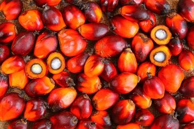 india-declares-change-in-tariff-value-of-palm-oil-crude-soyabean-oil-english.jpeg