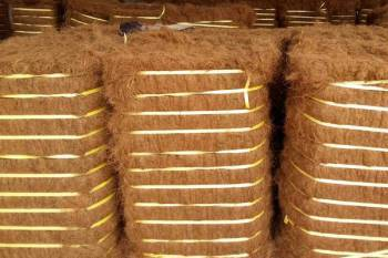 india-export-of-coir-and-coir-products-touch-inr-2757-crore-during-2019-20-english.jpeg