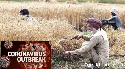 India issues advisory for farmers on Rabi crops in wake of COVID-19 spread