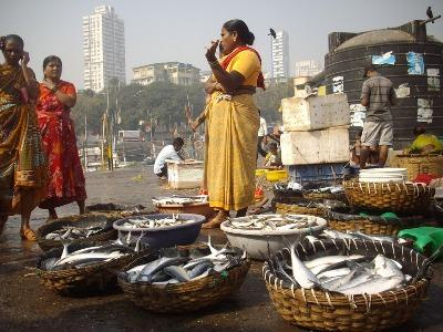 india-produced-14-60-bn-worth-of-fish-during-2015-16-says-agri-minister-english.jpeg