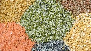 india-to-establish-150-seed-hubs-for-pulses-indian-agri-minister-english.jpeg