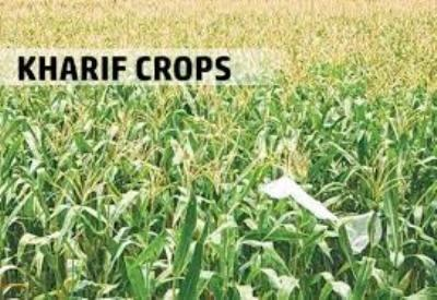indian-agri-ministry-releases-1st-advance-estimates-of-production-of-major-kharif-crops-for-2018-19-english.jpeg