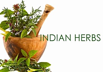 indian-export-of-herbs-and-herbal-products-records-14-22-growth-in-2017-18-english.jpeg
