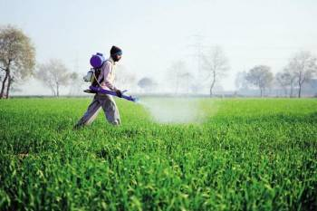 indian-fertilizer-company-eyeing-big-orders-from-african-countries-english.jpeg