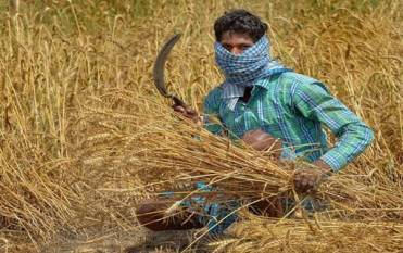 indian-government-releases-the-revised-guidelines-for-agriculture-allied-sectors-that-come-into-effect-from-april-20-english.jpeg