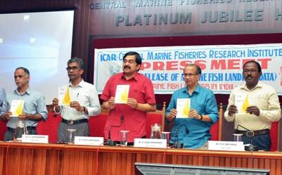 indian-marine-fish-production-shows-sign-of-revival-as-catch-increased-by-5-6-english.jpeg