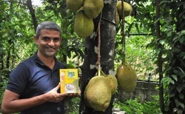 indias-jackfruit-flour-for-diabetes-gets-american-diabetes-association-recognition-english.jpeg