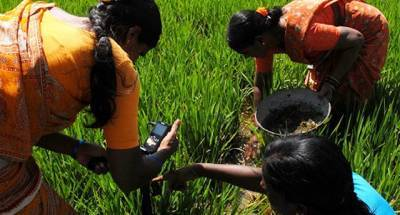 indias-next-generation-agromet-advisory-service-can-boost-yield-by-usd-430-bn-believes-icrisat-scientist-english.jpeg